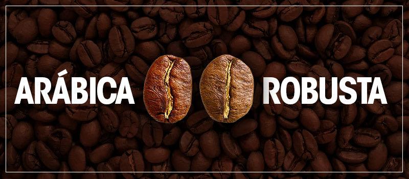 Café Arábica x Café Robusta